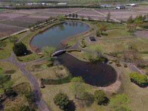 大中小の3つの池があります。