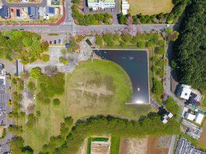 広大な芝生ときれいな池です。是非一度立ち寄ってみてください。
