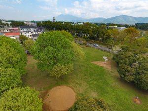 遠くに筑波山が見えます。