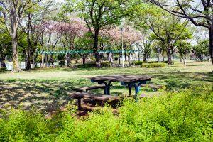 緑あふれる景色の中でのんびりとした時間を過ごしてください。