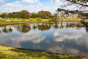 静かな池に映る白い雲と青空。ずっと眺めていたいです。