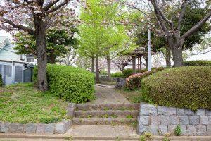 入口の両脇に植えられた桜が迎えてくれます。