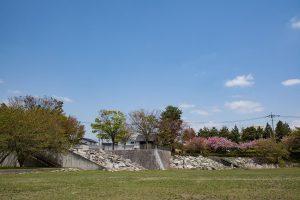 青空と美しい芝生広場に爽やかな風。最高です!