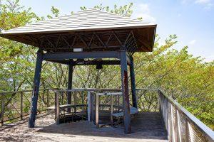 らせん階段を上がって展望台に上がると、公園の全景と筑波山を眺められますよ。是非のぼってみてくださいね。