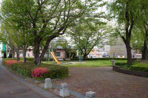 入口には桜の木。お花見も楽しめます。