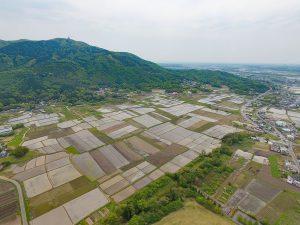 関東きっての良質米産地。圧巻の田園地帯が広がります。北条米はここで育ちます。