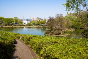 松見公園内の散歩コース。高低差があり、植木の間の細い道を通る。
