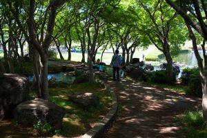 木陰では子どもたちが水遊びをしていた。