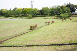 新色が眩しい季節。芝生の緑の匂いと爽やかな風が心地よいです。