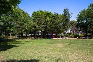 芝生広場の奥に遊具が並んでいます。