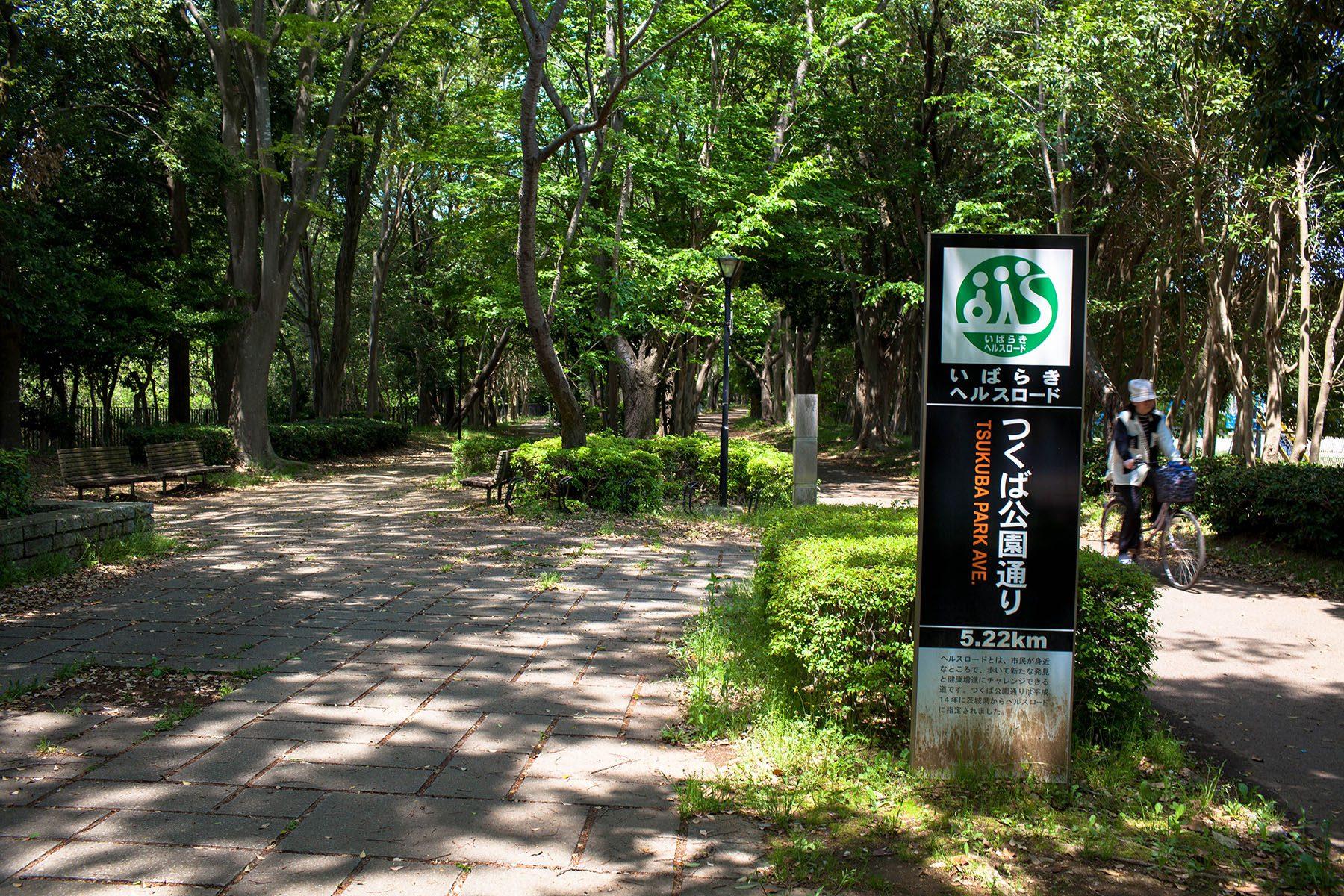 いばらきヘルスロードに選ばれている「つくば公園通り」赤塚公園〜松見公園まで5.22km。